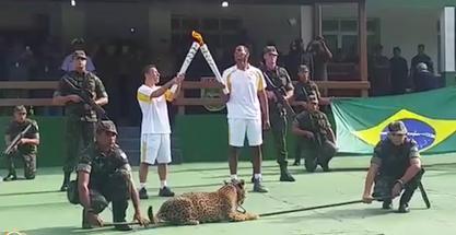 Jaguar muerto a tiros al paso de la llama olímpica